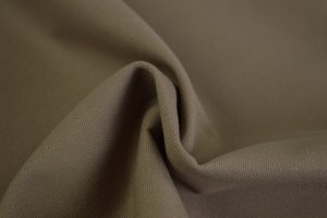 Canvas 69 taupe