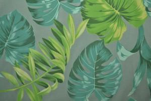 Cotton jersey print - wow 16-34 oud groen