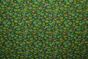 Cotton jersey print - wow 10-32 groen