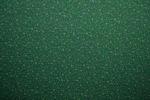 Cotton jersey print - wow 11-32 groen