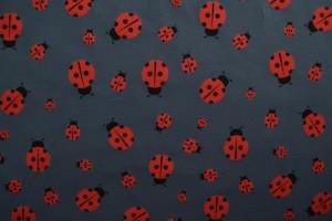 Cotton jersey print - wow 57-17 donkergrijs